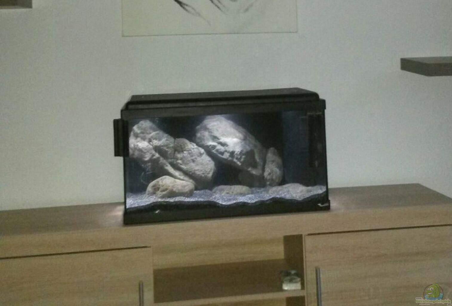aquarium von rinsu little lake tanganjika. Black Bedroom Furniture Sets. Home Design Ideas