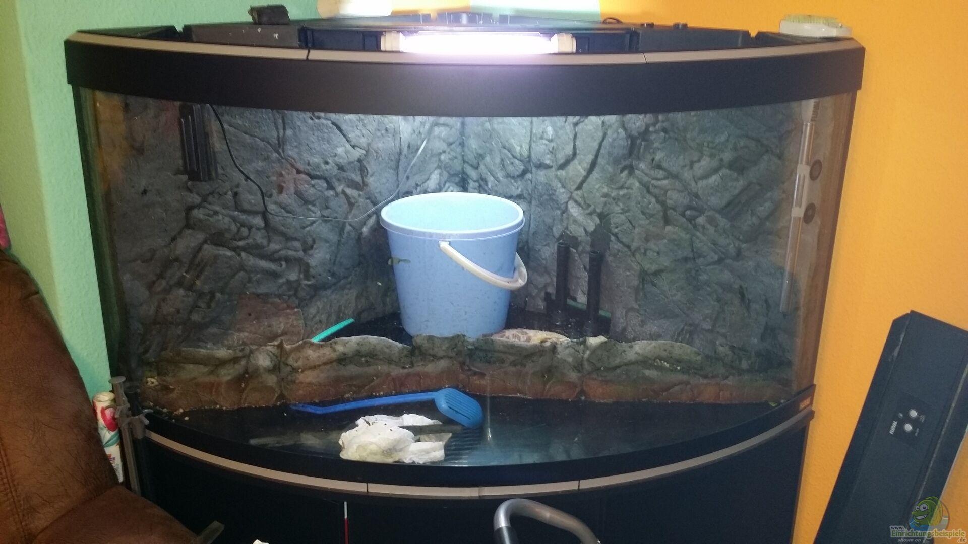 aquarium venezia 350. Black Bedroom Furniture Sets. Home Design Ideas