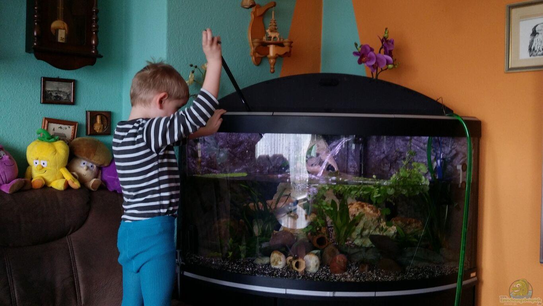 steffen und felix fluval venezia 350 eckaquarium. Black Bedroom Furniture Sets. Home Design Ideas