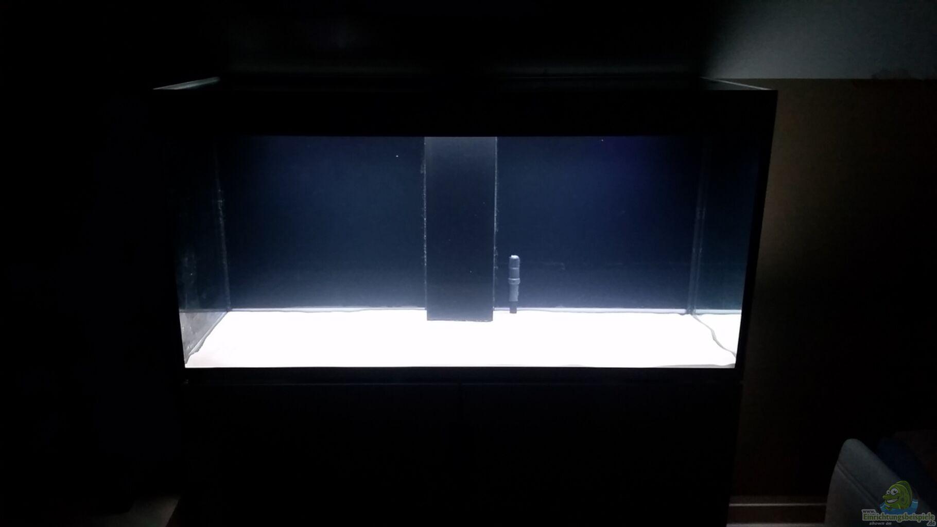 aquarium von phillip92 incpiria 400 diskus. Black Bedroom Furniture Sets. Home Design Ideas