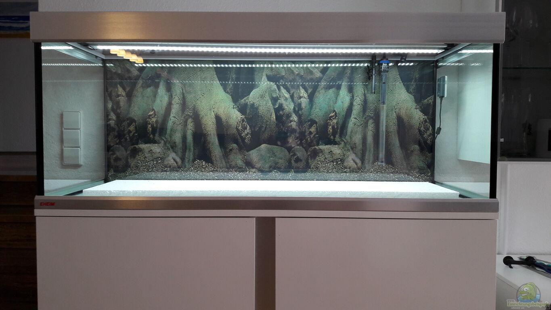 aquarium von john pulpo ein gringo in s damerika. Black Bedroom Furniture Sets. Home Design Ideas