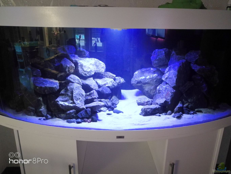 aquarium von nandokater anf nger malawi vision 450. Black Bedroom Furniture Sets. Home Design Ideas