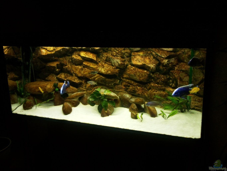 Aquarium von thomas fricke becken 3408 for Aquarium becken