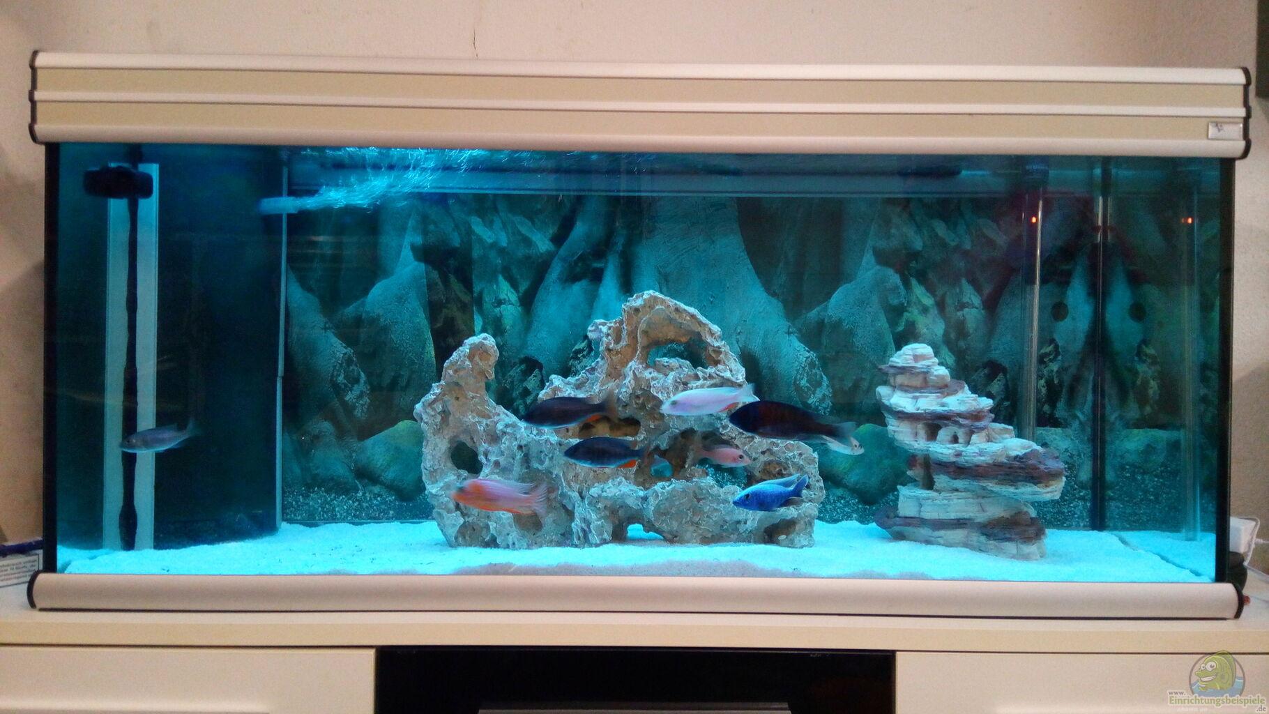 Aquarium von stefan84 becken 34175 for Aquarium becken