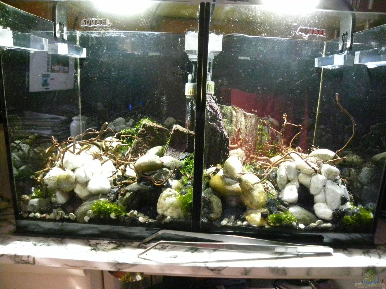 beide aquarien mit wasser ohne besatz und noch ohne. Black Bedroom Furniture Sets. Home Design Ideas