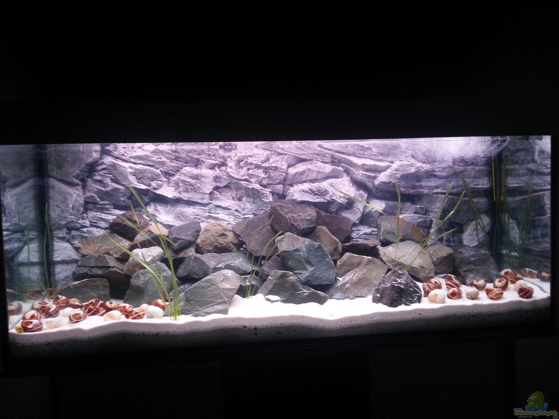 Aquarium becken 34404 aus becken 34404 von sheka for Aquarium becken