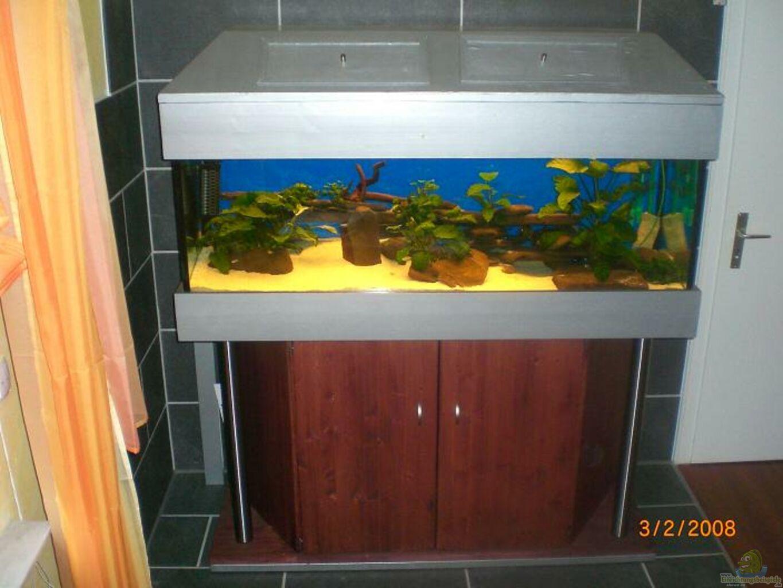 aquarium von sascha1607 becken 3540. Black Bedroom Furniture Sets. Home Design Ideas