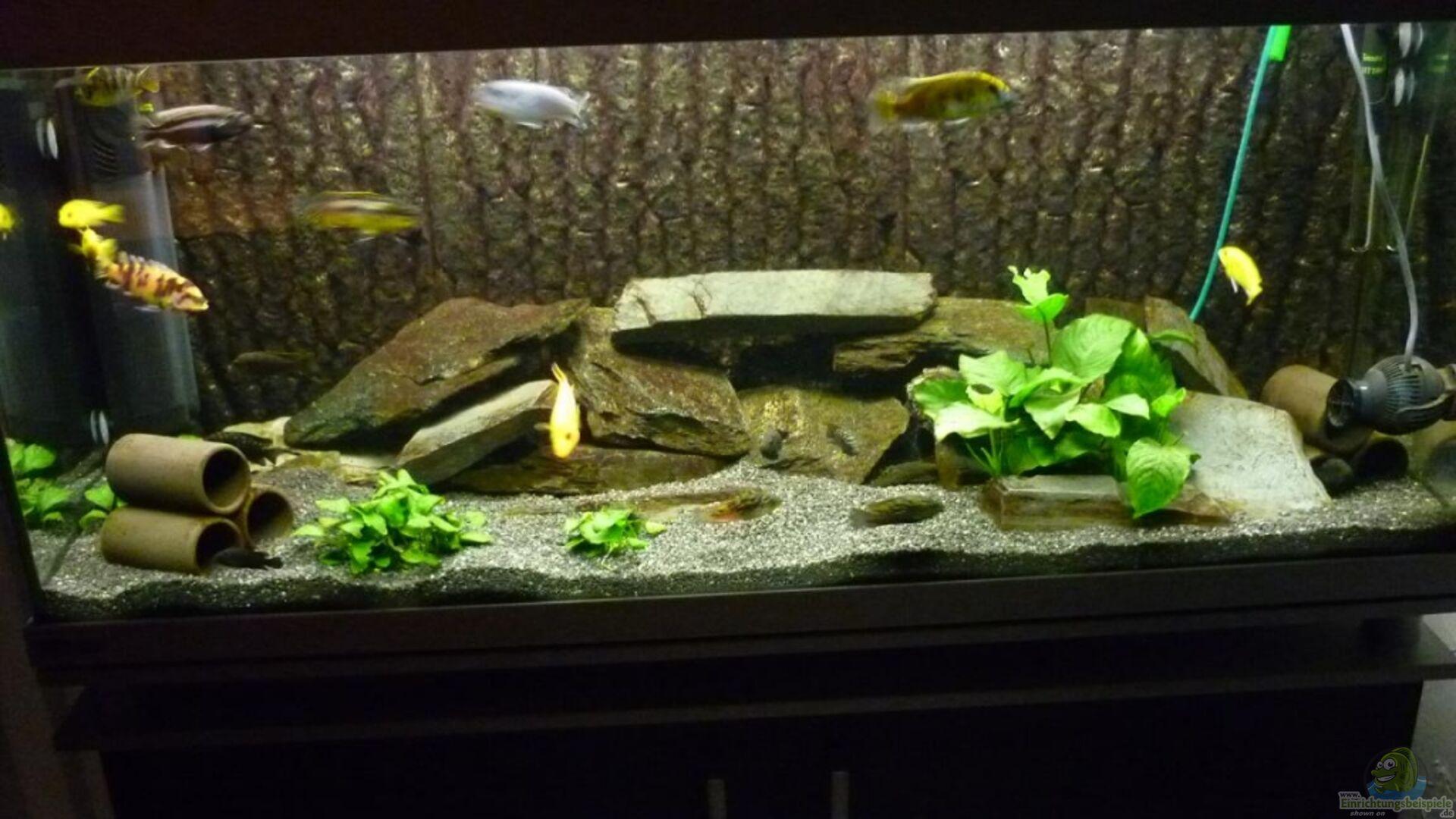 aquarium von refo78 becken 3882. Black Bedroom Furniture Sets. Home Design Ideas