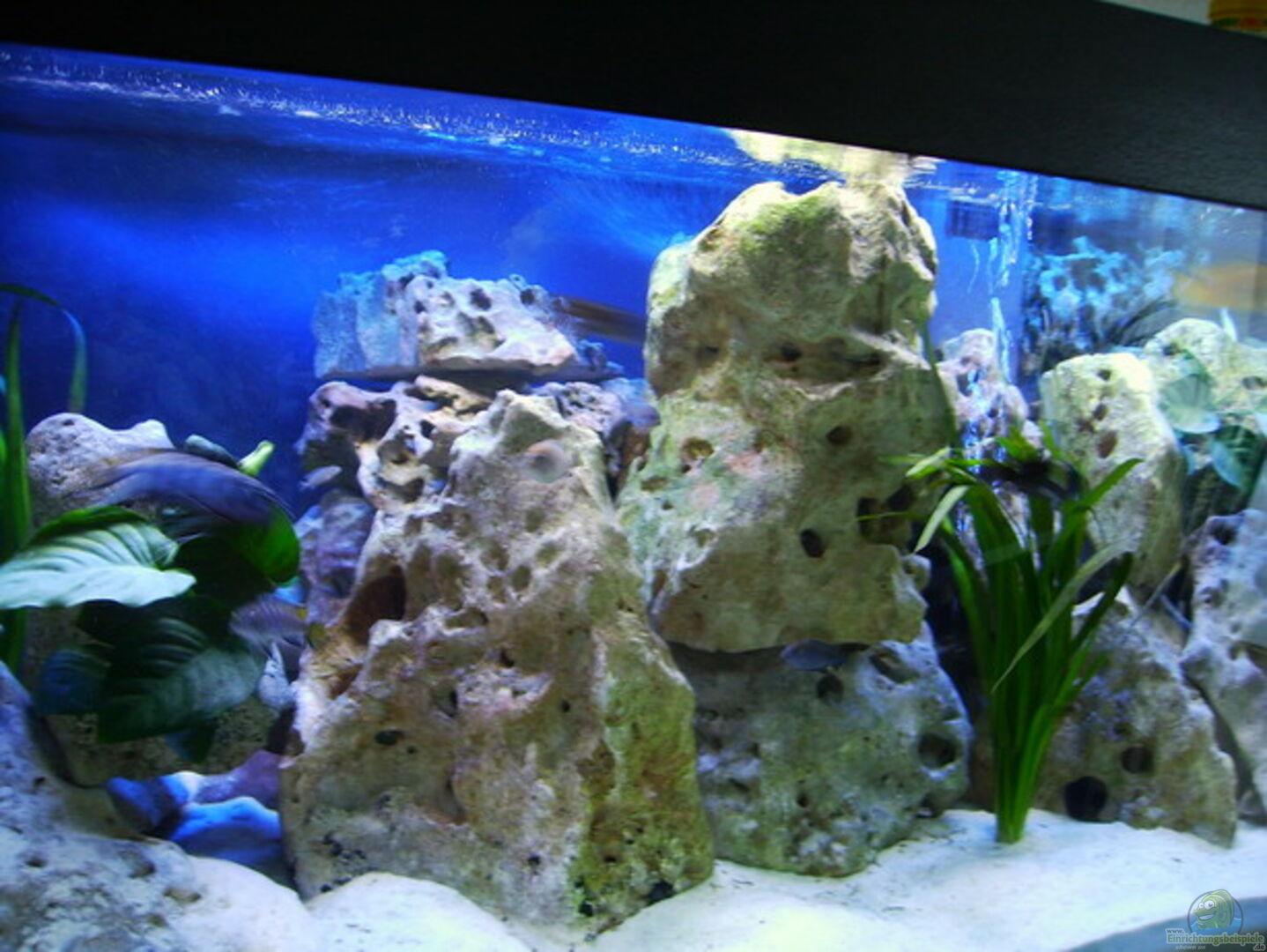 Aquarium von Sascha Bill: Becken 4411