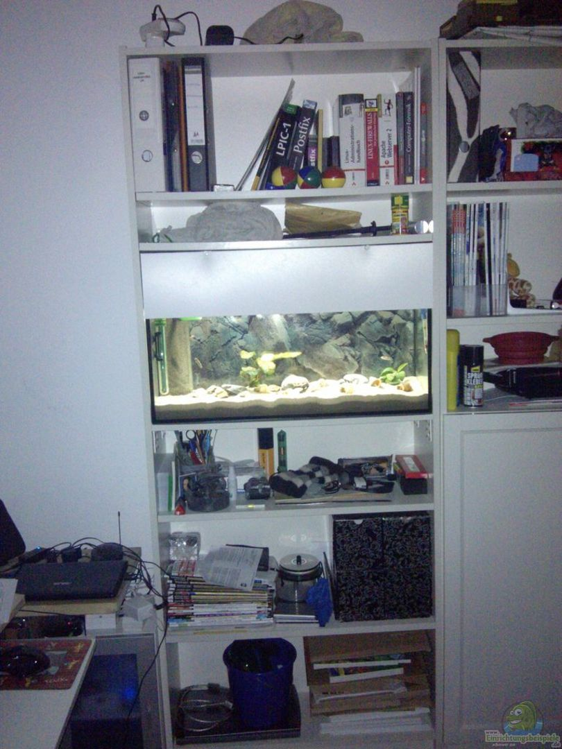 aquarium von talorin 4450 ikea billy regal aquarium. Black Bedroom Furniture Sets. Home Design Ideas