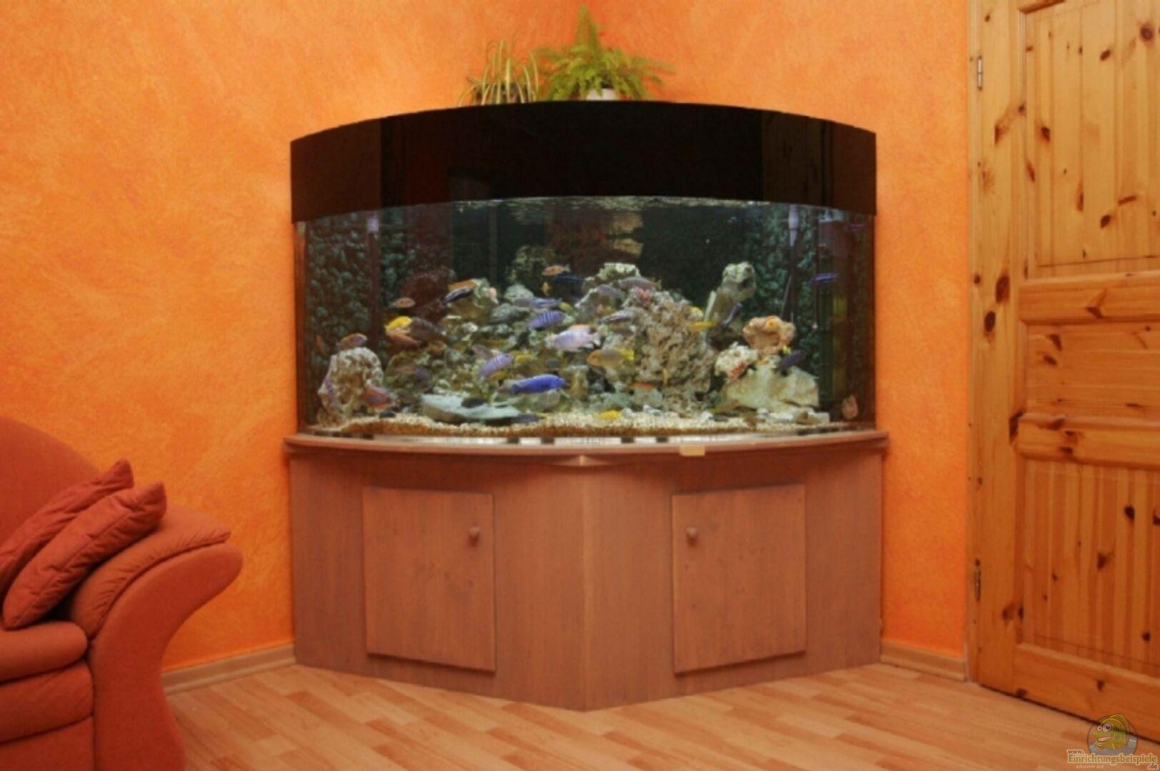 aquarium von ren ickelsheimer becken 4748. Black Bedroom Furniture Sets. Home Design Ideas