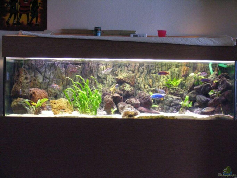 aquarium von jan kadletz becken 610. Black Bedroom Furniture Sets. Home Design Ideas