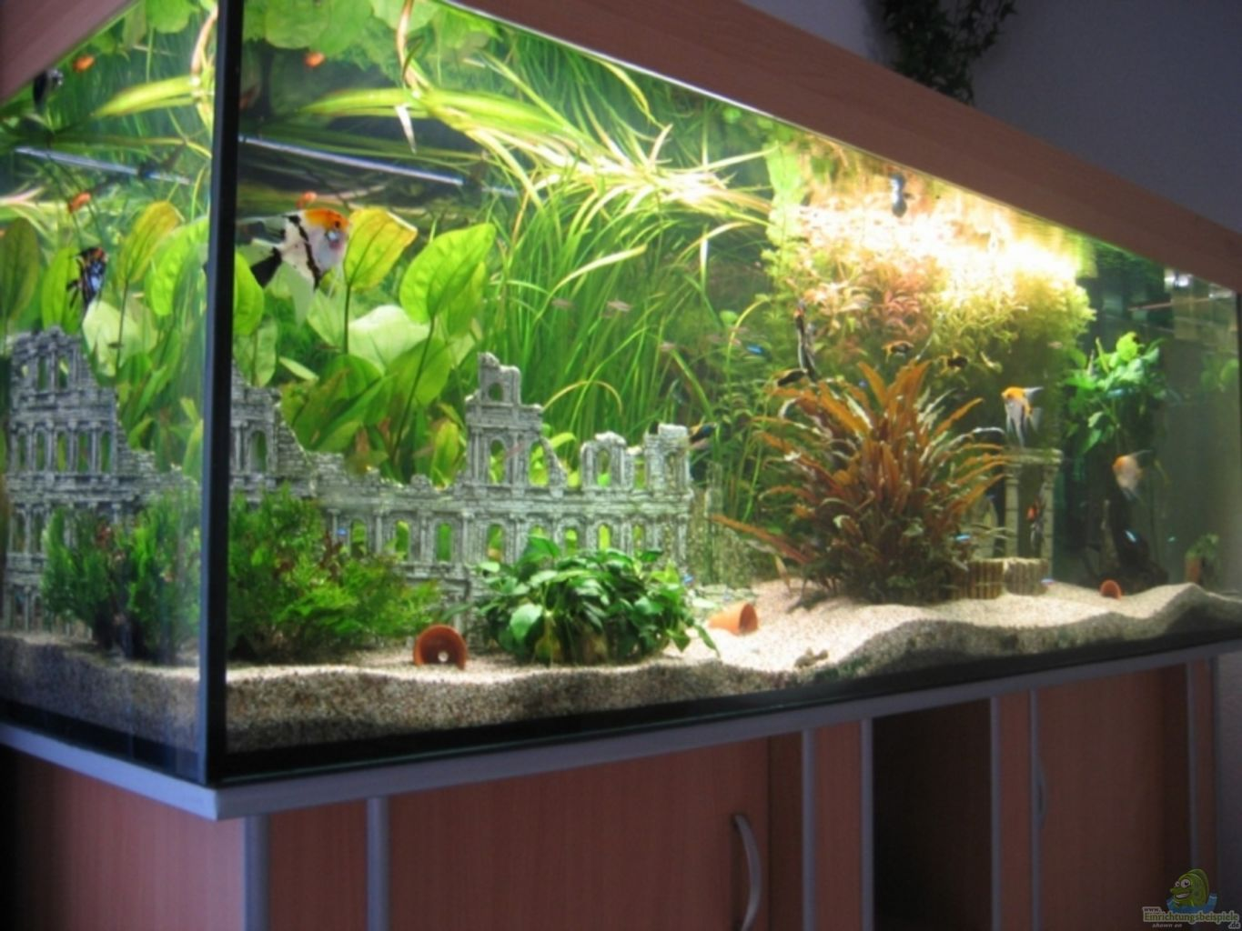 aquarium deko ideen great garten deko ideen u motelindio garten ideen gestaltung with aquarium. Black Bedroom Furniture Sets. Home Design Ideas
