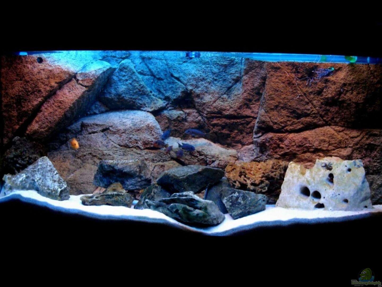 aquarium von vladi becken 6431. Black Bedroom Furniture Sets. Home Design Ideas