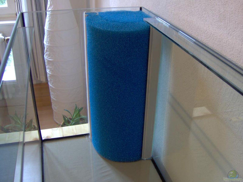 aquarium von stefan reinl becken 6436. Black Bedroom Furniture Sets. Home Design Ideas