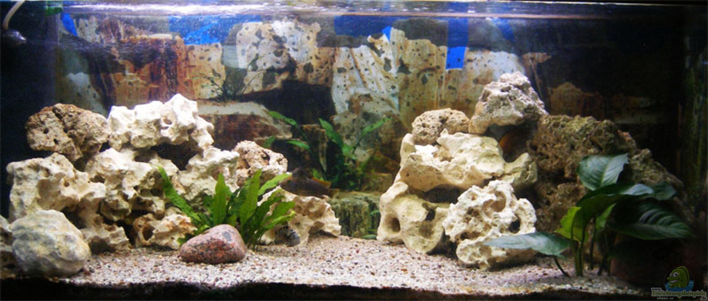 aquarium von malawiwolf becken 6797. Black Bedroom Furniture Sets. Home Design Ideas