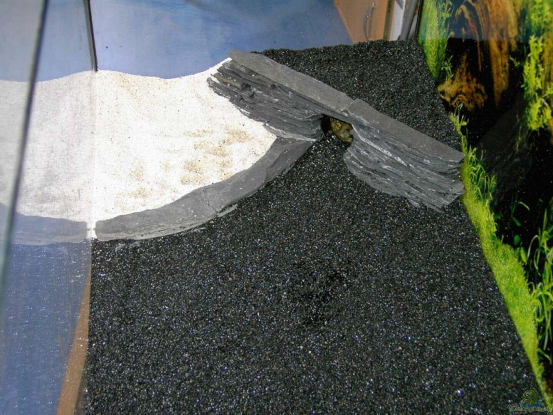 Sandbank Abgegrenzt Durch Eine Terrassen Ebene Und Rechts Eine