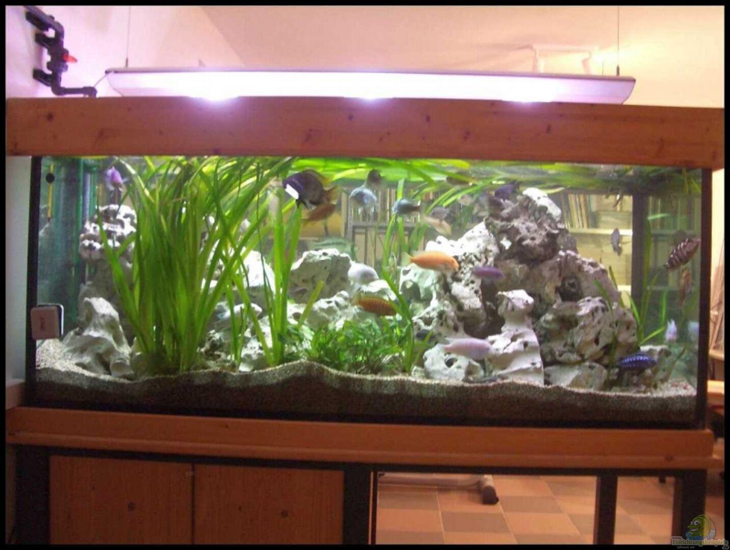 aquarium von knoeri becken 7069. Black Bedroom Furniture Sets. Home Design Ideas