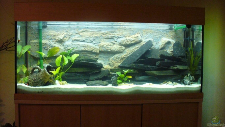 aquarium von knut hillmer becken 7305. Black Bedroom Furniture Sets. Home Design Ideas