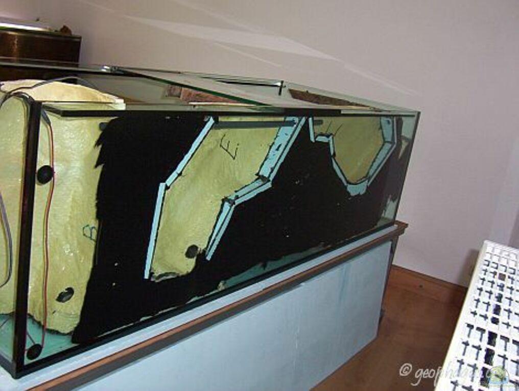 aquarium von ajot becken 7410. Black Bedroom Furniture Sets. Home Design Ideas