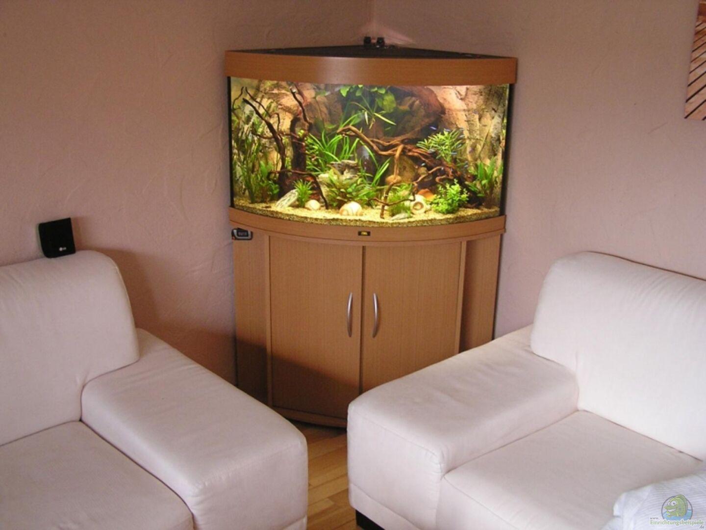 juwel trigon 190 aus becken 7452 von froxxs. Black Bedroom Furniture Sets. Home Design Ideas