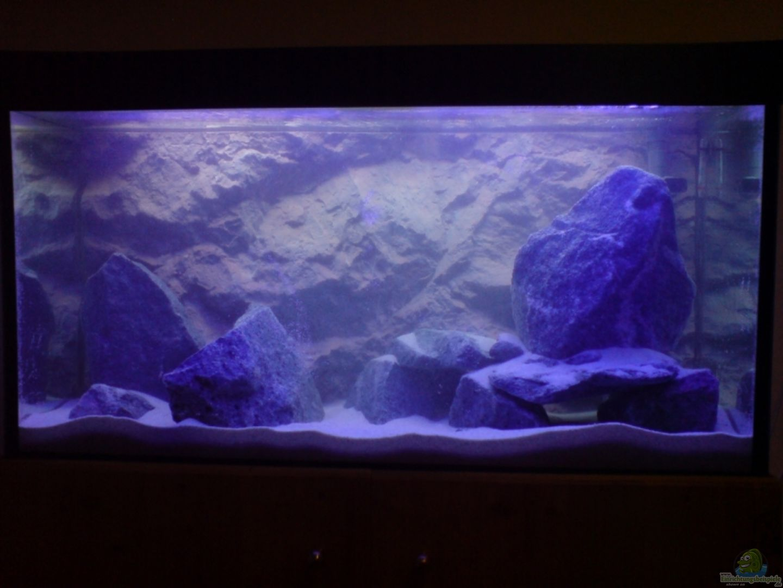 aquarium von dommsel becken 7483. Black Bedroom Furniture Sets. Home Design Ideas