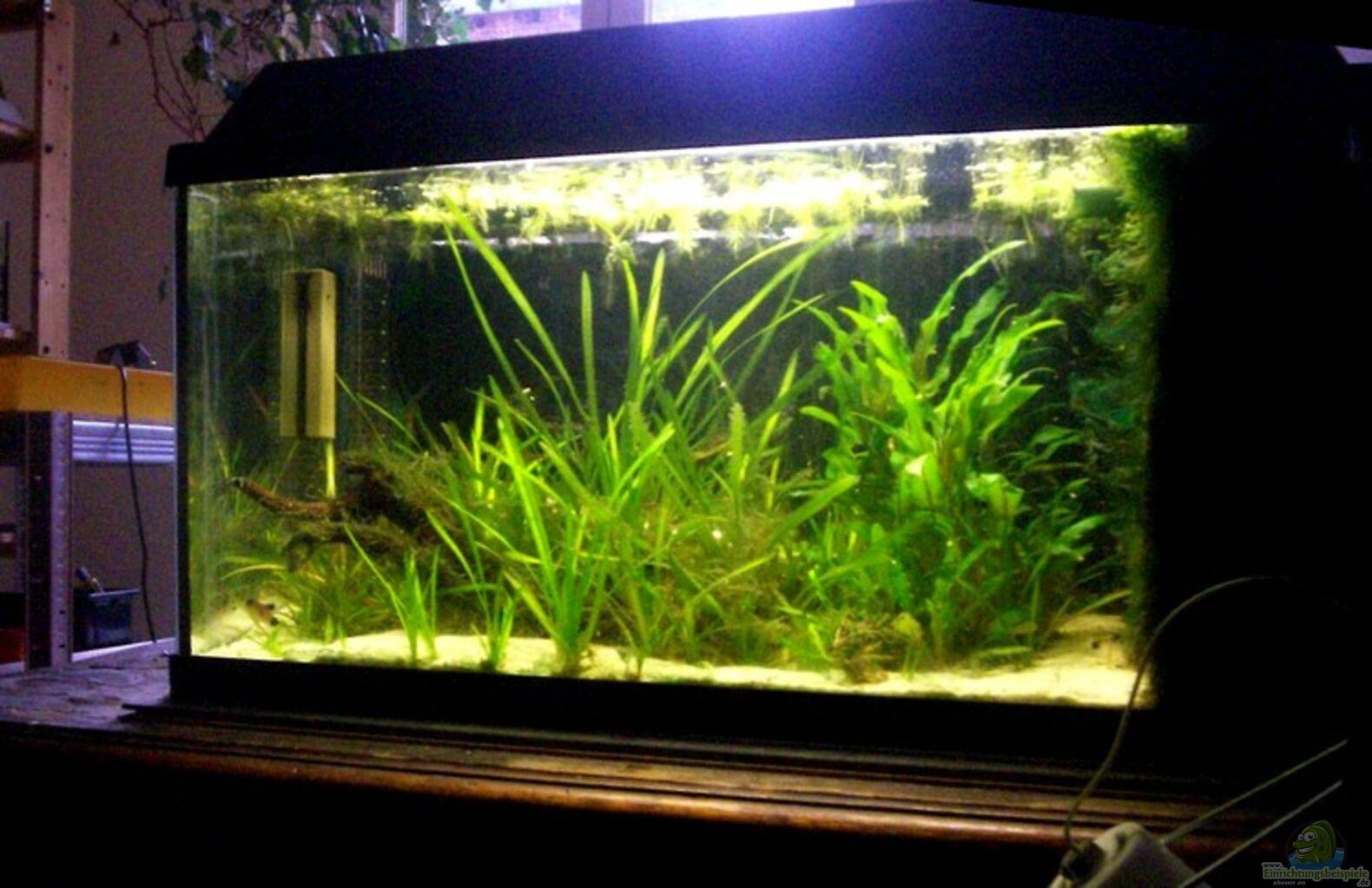 aquarium von robert m ller becken 7857. Black Bedroom Furniture Sets. Home Design Ideas
