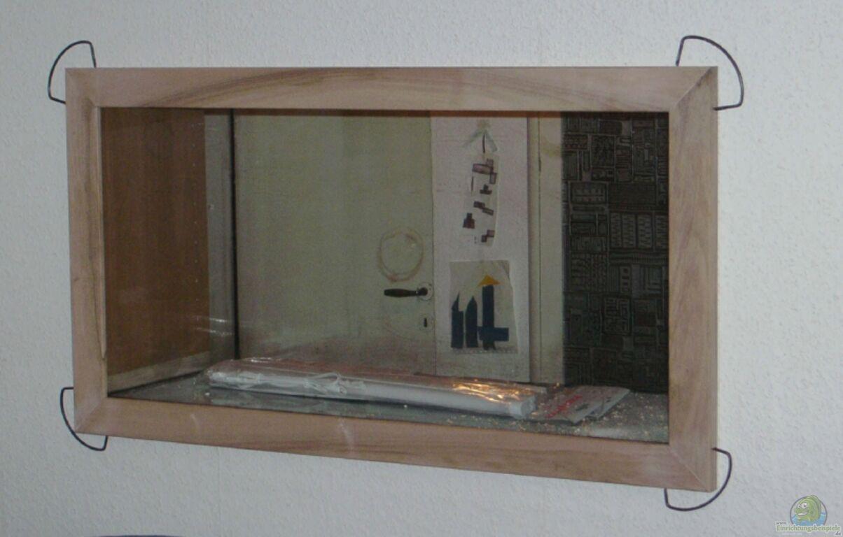 aquarium von zwanni becken in zimmerwand. Black Bedroom Furniture Sets. Home Design Ideas