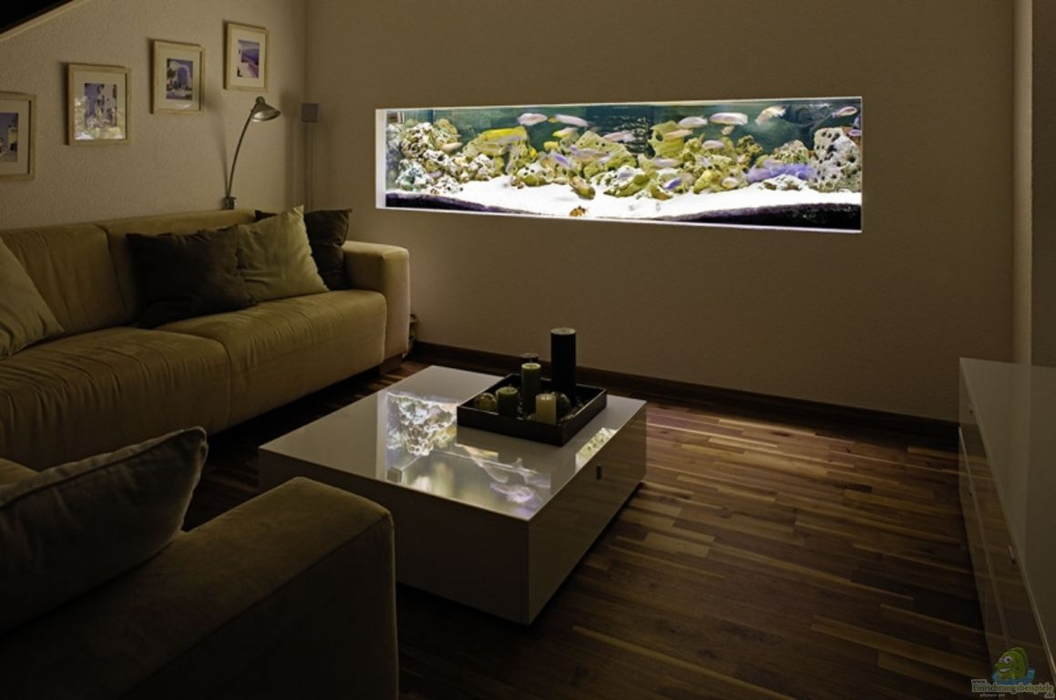 aquarium von marcos arias becken 89. Black Bedroom Furniture Sets. Home Design Ideas