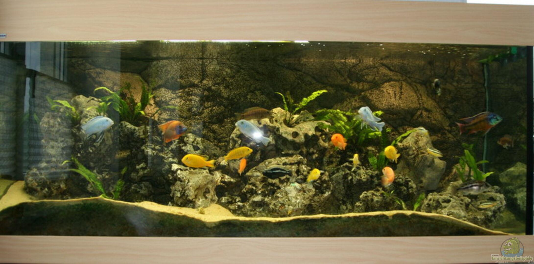 aquarium von rolf drechsler becken 892. Black Bedroom Furniture Sets. Home Design Ideas