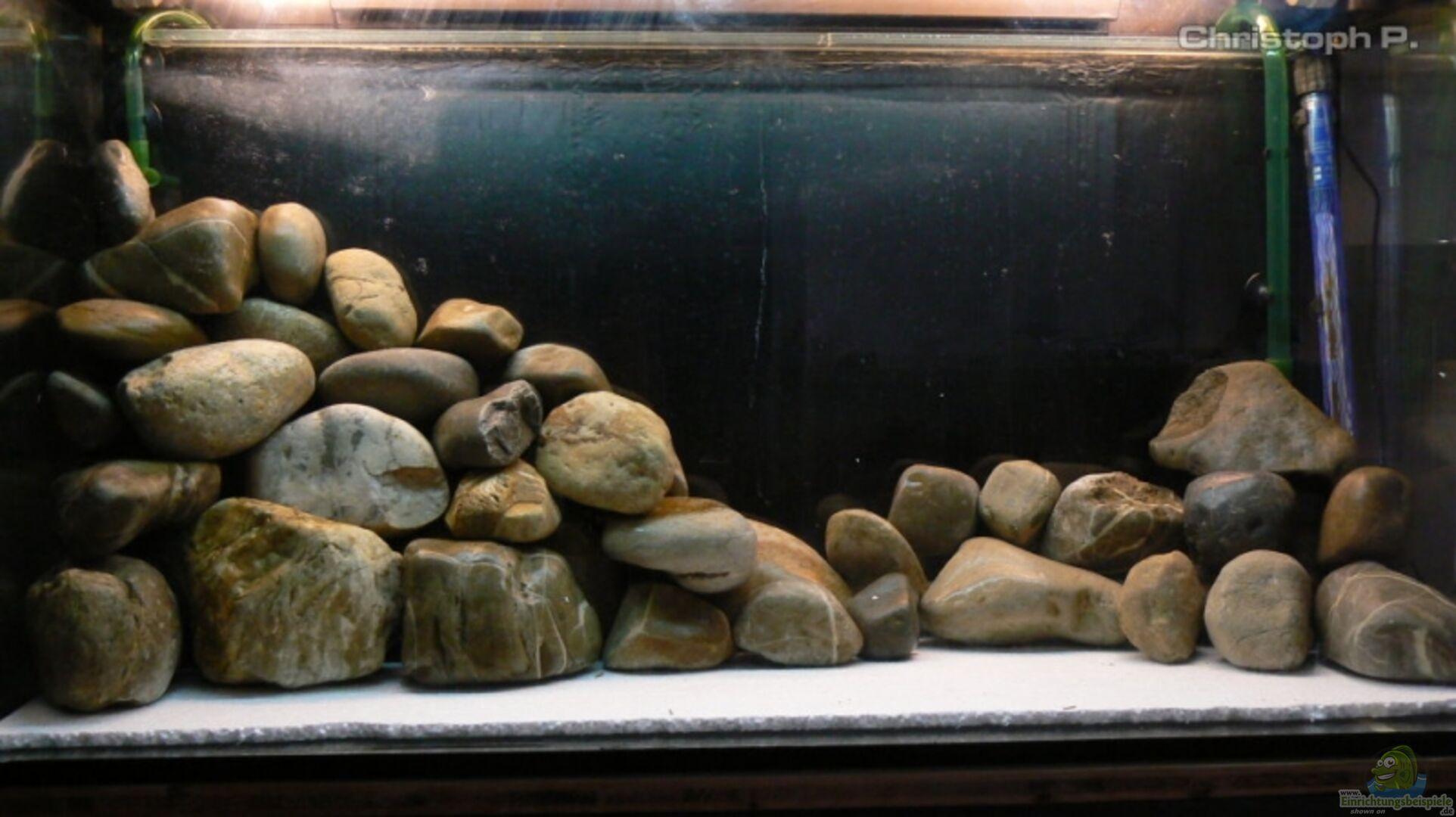 aquarium von gruengold becken 8939. Black Bedroom Furniture Sets. Home Design Ideas