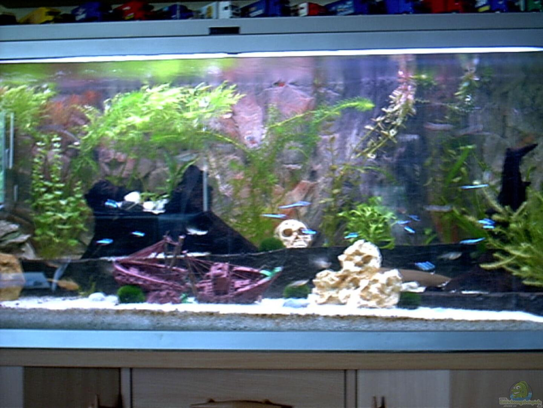 aquarium von volker heim becken 8945. Black Bedroom Furniture Sets. Home Design Ideas