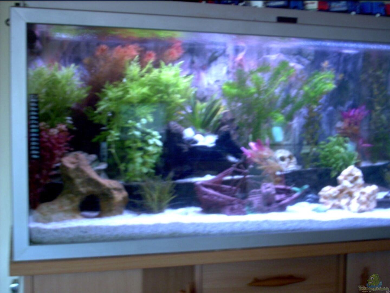 Aquarium von Volker Heim: Becken 8945