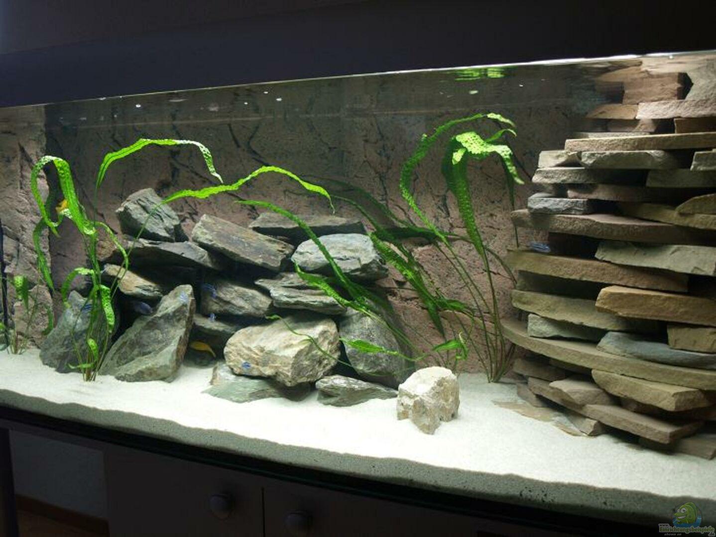 aquarium von branjo becken 9607 nur noch beispiel. Black Bedroom Furniture Sets. Home Design Ideas
